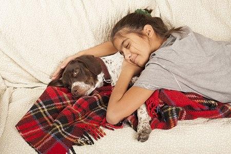 כלב, חברו הטוב ביותר של האדם. צילום: shutterstock