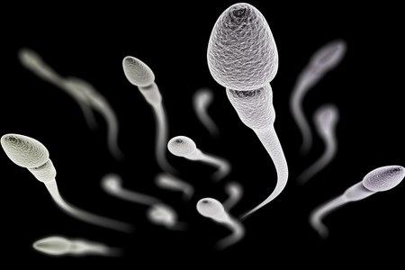 פגמים מורפולוגיים בראש תא הזרע מעלים את הסיכוי להפלות. צילום: שאטרסטוק