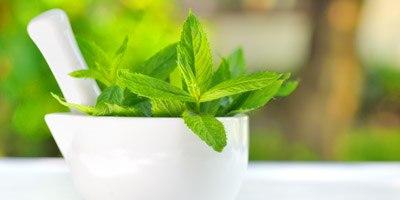 טיפול צמחי בהפרעות קשב וריכוז. צילום: shutterstock