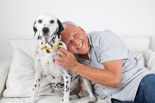 החזקת בעל חיים מחייבת את המטופל לטפל במישהו אחר. צילום: שאטרסטוק