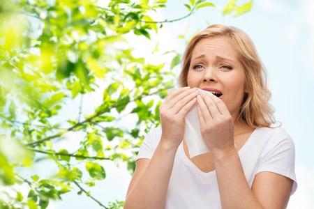 מחלת האף השכיחה ביותר היא נזלת אלרגית. צילום: שאטרסטוק