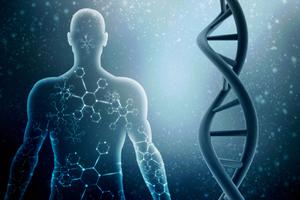 גורמים גנטיים. צילום: שאטרסטוק