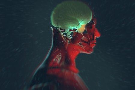 מחלות מוח ניווניות נוצרות בעיקר מאוטמים מוחיים. צילום: שאטרסטוק