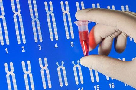 אבחון גנטי טרם הלידה (אילוסטרציה shutterstock)